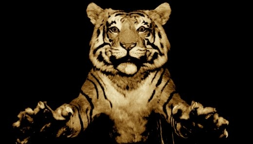 tiger01_1.jpg