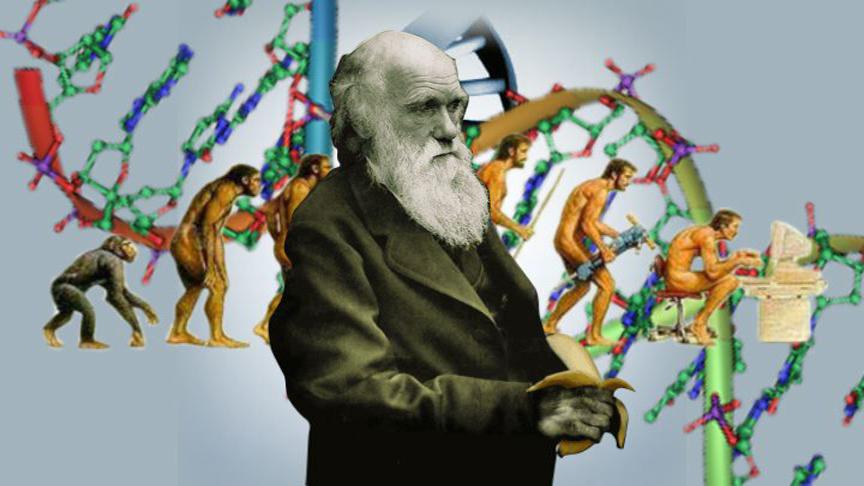 darwin-copy.jpg