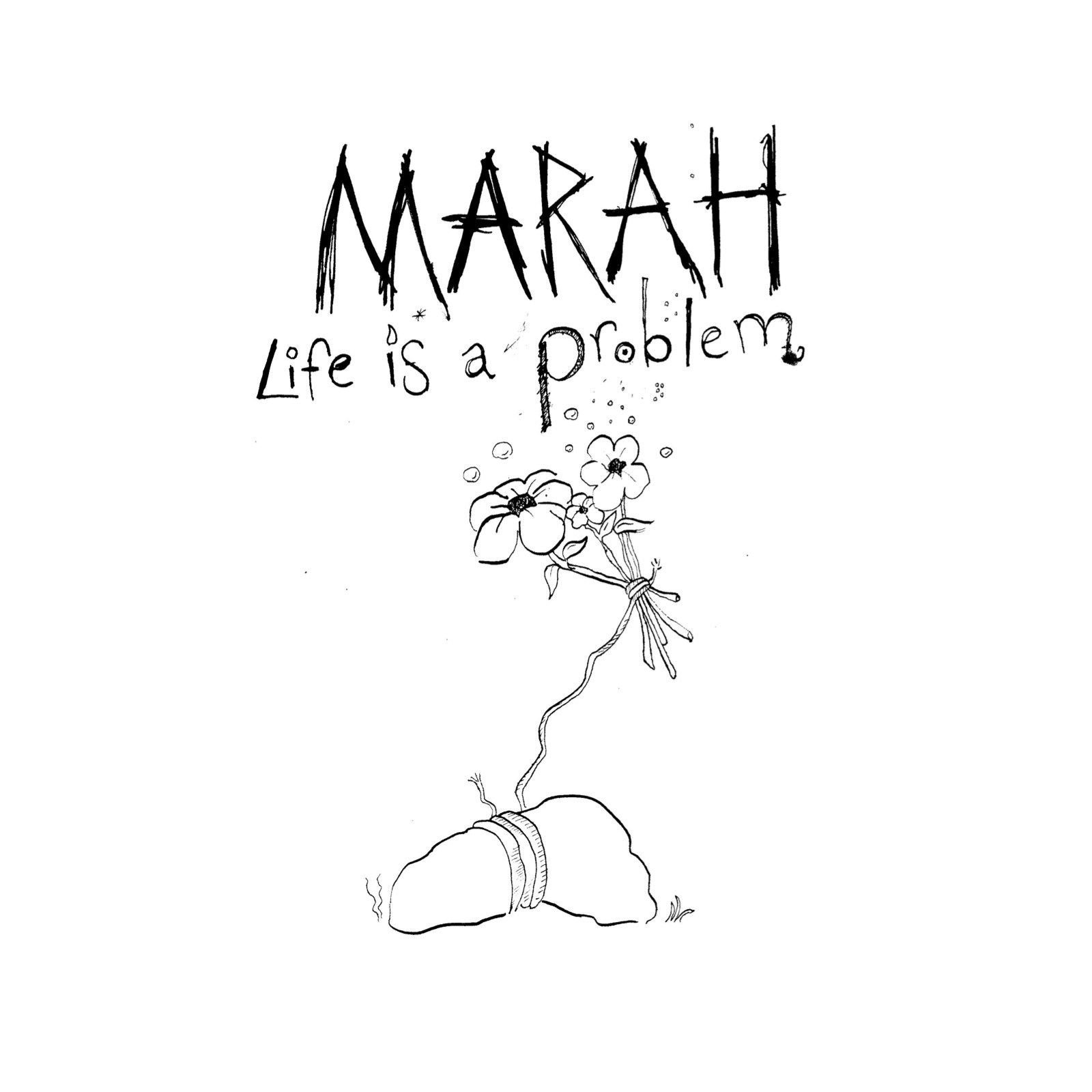 life_is_a_problem_cover_20100420_112953.jpg