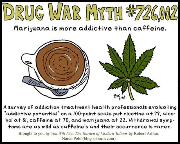 Drug War Myth 2 Marijuana Caffeine 909 WEB
