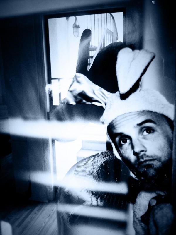 Moby Bleu Bunny