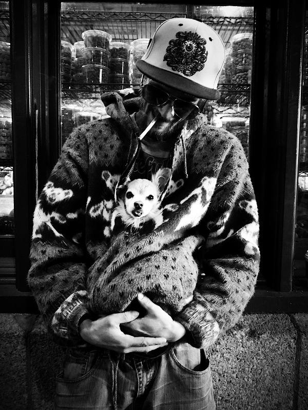 Doggie_Meg_Matuzak