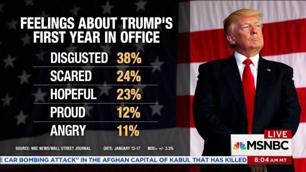 Trump Public Opinion