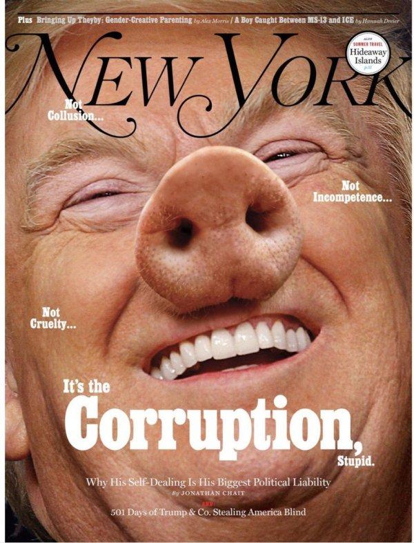NY_Mag_Trump_Pig